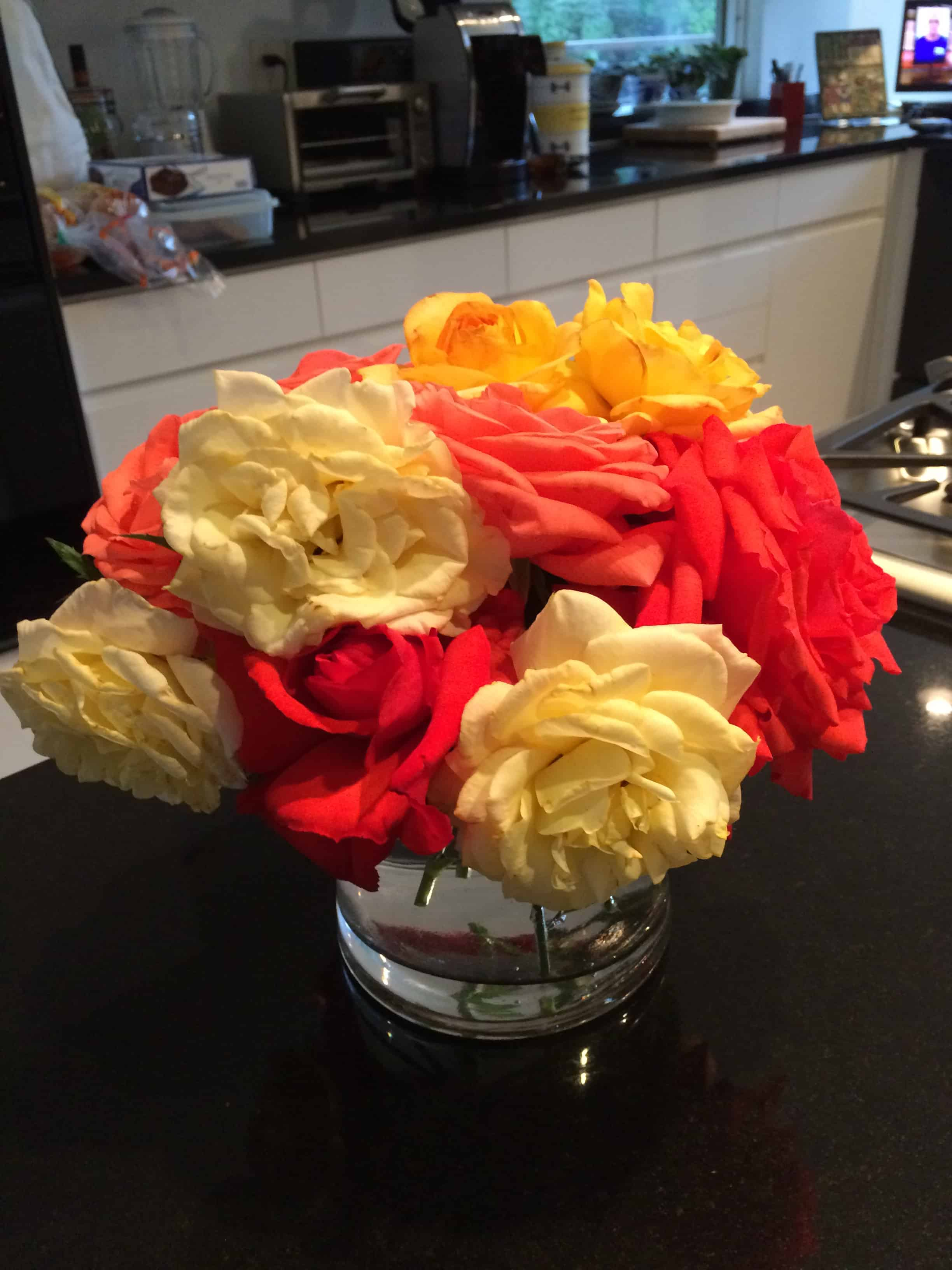 2015 05 beautiful roses